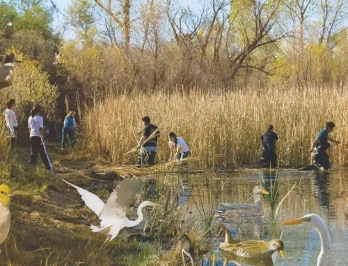 National Park Site Certification of Las Lagunas March 23, 2015 – 4 p.m. to 6 p. m.